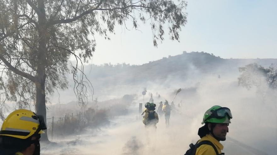 Extinguido el fuego de El Madroño, que ha afectado a 245 hectáreas de matorral y agrícola