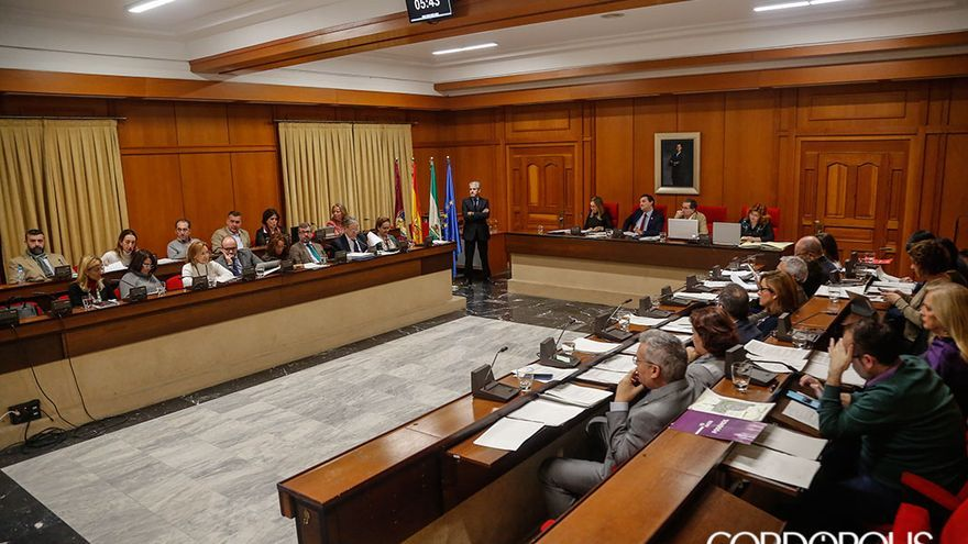 Panorámica del Pleno del Ayuntamiento   ÁLEX GALLEGOS