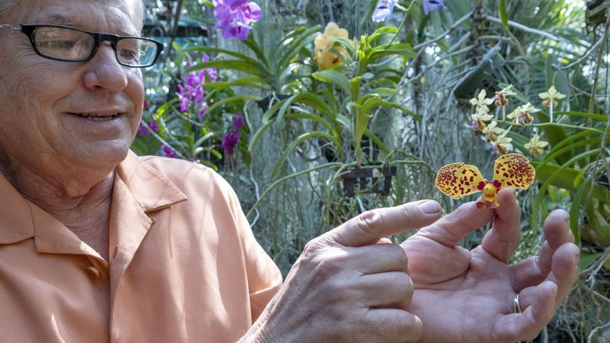 """El """"orquidiloco"""" que descubrió dos especies de orquídeas en Bogotá"""