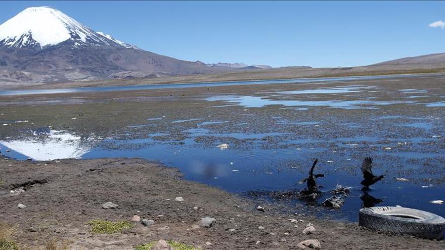 El lago chileno Chungará, un paraíso en las alturas convertido en vertedero
