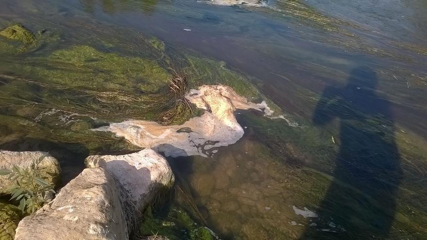 Aseguran que el río nunca había tenido tanta espuma.