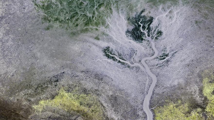 Caño seco en la marisma del Rocío, Parque Nacional de Doñana / Héctor Garrido (baCSICa)