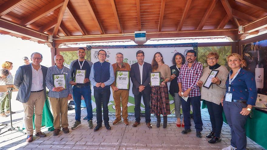 Foto de familia tras la entrega de los premios del IV concurso regional del Cabildo de Tenerife