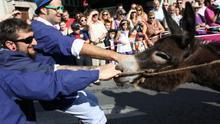 Carreras de burros: entre lo patético y lo canalla