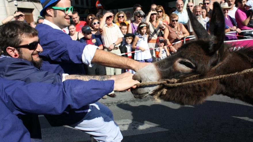 Carrera de burros en Vitoria-Gasteiz. Foto: ATEA