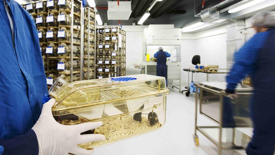 Instalaciones del animalario del Parque de Investigación Biomédica de Barcelona / PRBB / Bioregió de Catalunya / Raimon Solà