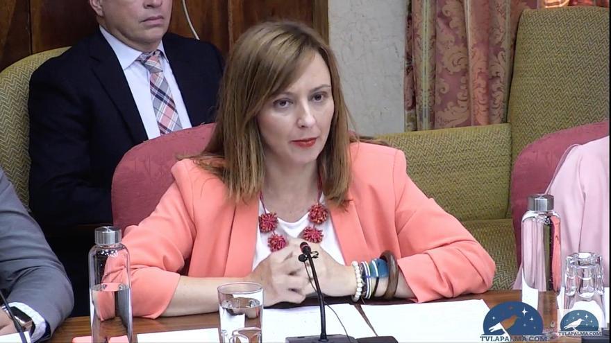Nieves Lady Barreto (CC), este miércoles, durante su intervención en el pleno del Cabildo de La Palma.