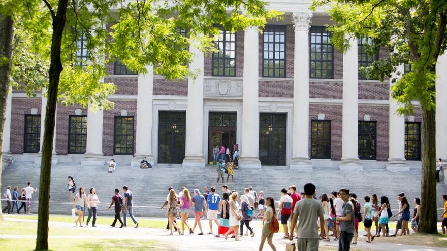 Dos 'startups' españolas, listas para aterrizar en Harvard