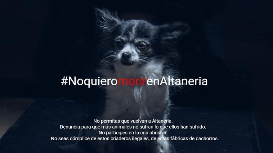 Cartel de la campaña #NoQuieroMorirEnAltanería