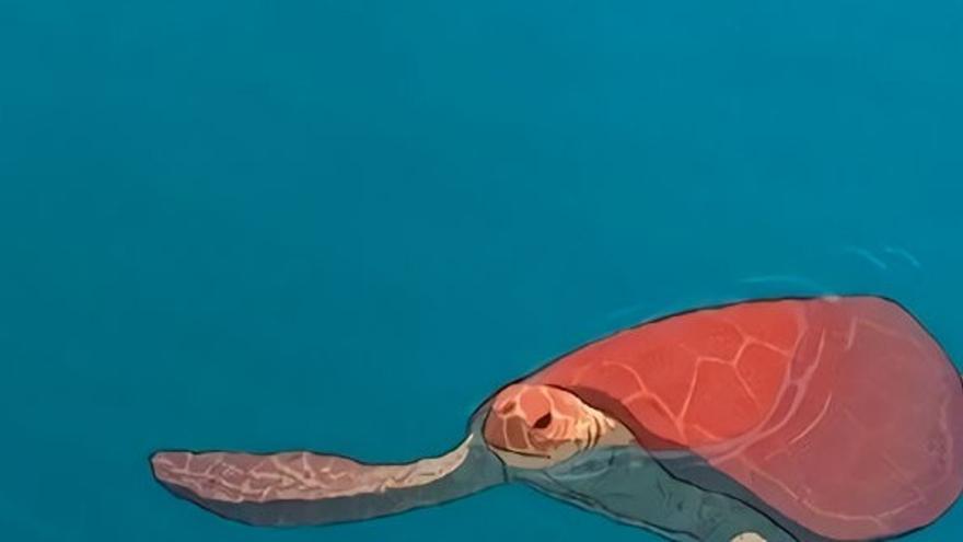 The Red Turtle, de Michael Dudok de Wit