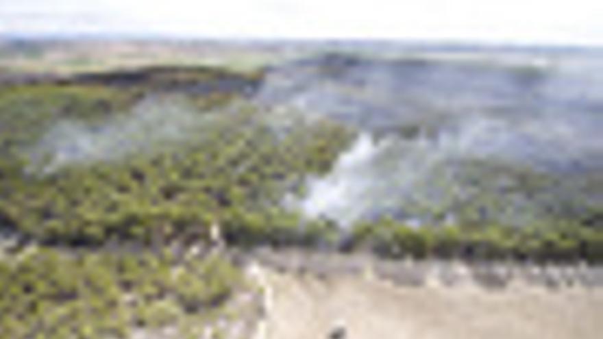 Imagen del incendio originado en Falces.
