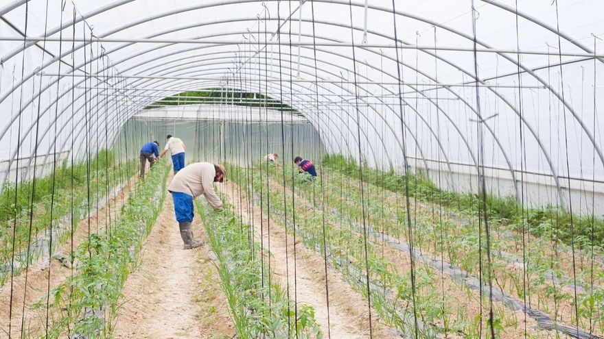 Comienzan esta semana los cursos de agricultura ecológica en la Ekogela de Bioeskola BBK