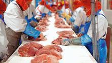 Planta de tratamiento de la carne de Westfleischs.