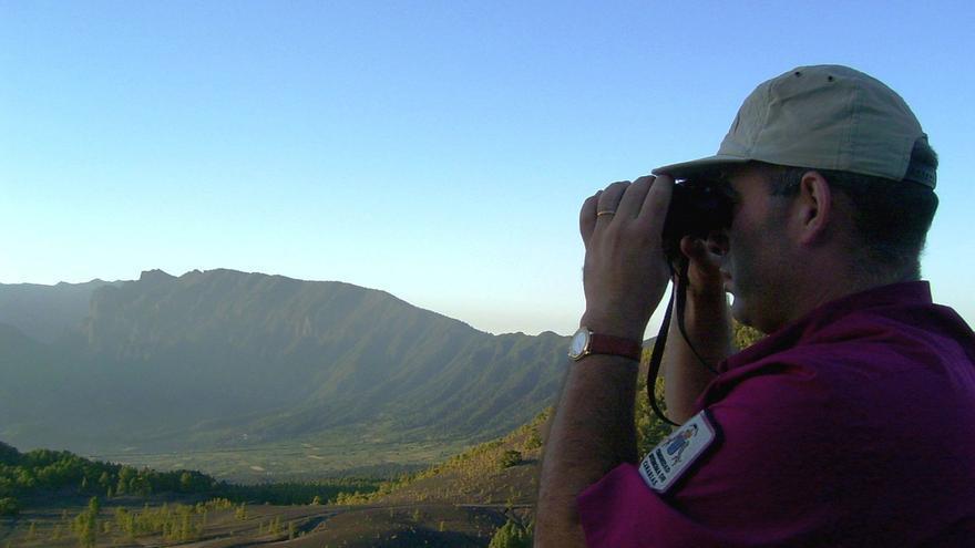 Imagen de archivo de un agente de Medio Ambiente vigilando los monte de La Palma.