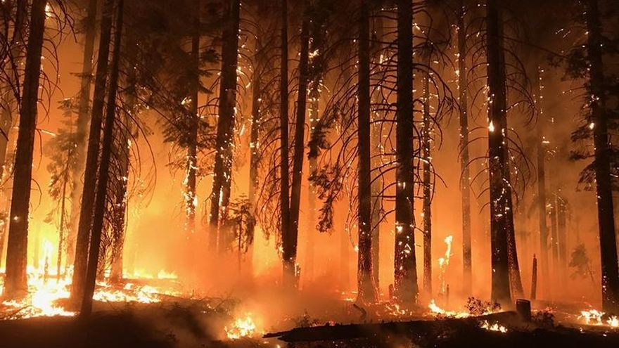 El incendio Paradise ha sido el más mortal de la historia de California