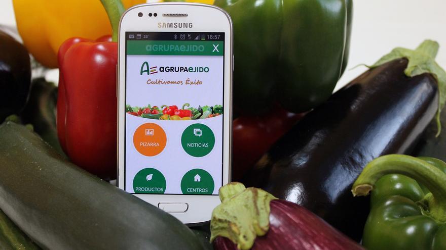 Agrupaejido ha lanzado la app para la subasta hortícola