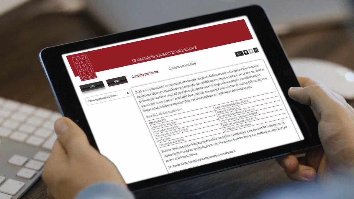 Les consultes gramaticals es poden fer mitjançant el web de l'AVL.