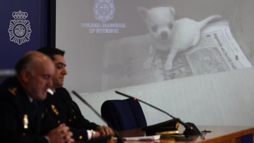 El Comisario Jefe Unidad de Delitos contra las Personas de la Policía Nacional, Enrique Juárez (i), y el Inspector Jefe Sección Consumo, Medioambiente y Dopaje, Juan José Castro, durante la rueda de prensa.