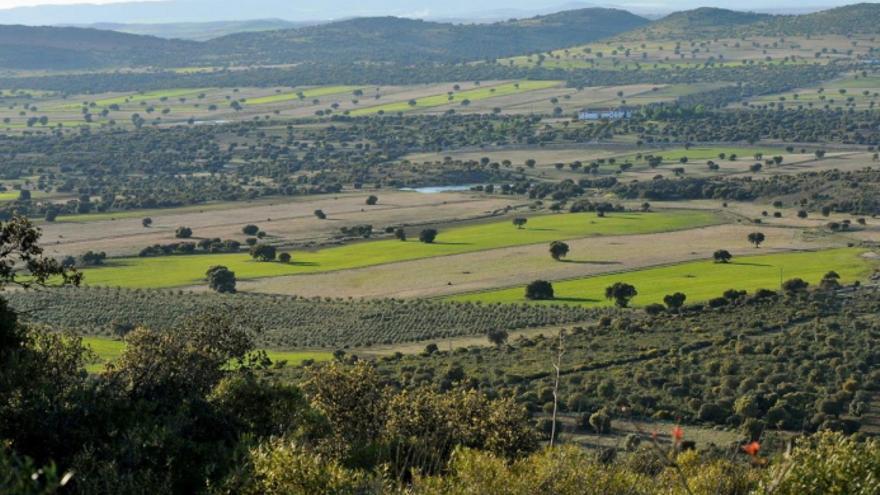 Campo de Montiel (Ciudad Real) / Plataforma Sí a la Tierra Viva