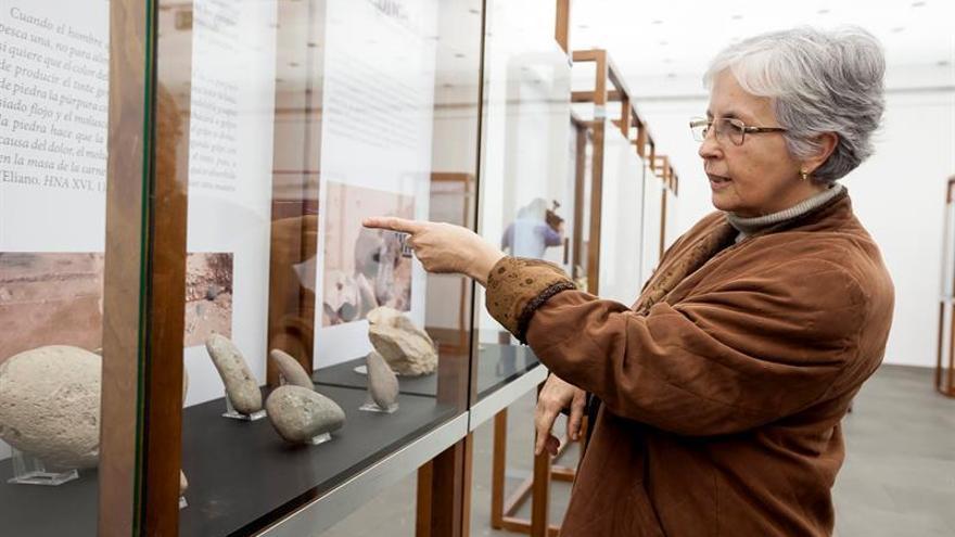 La arqueóloga de la Universidad de La Laguna, Carmen del Arco, comenta algunos de los elementos encontrados en el yacimiento del islote de Lobos y que se recogen en la exposición 'Un taller romano de púrpura: Lobos 1' / Ramón de la Rocha/EFE