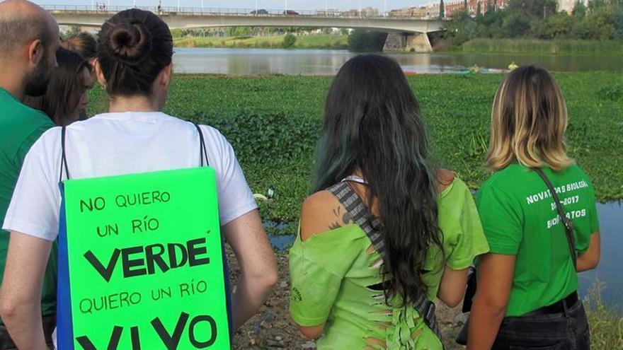 Piden acabar con la invasión del camalote y nenúfar mexicano en el Guadiana