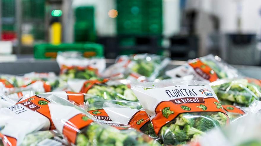 Brócoli envasado
