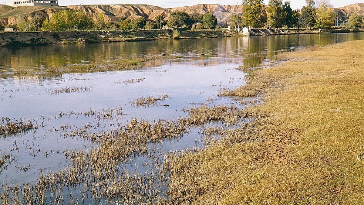 Vista del río Tajo desde la Huerta del Rey