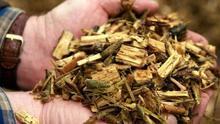 """El sector de la biomasa reclama su inclusión como """"servicio esencial"""" durante el estado de alarma"""