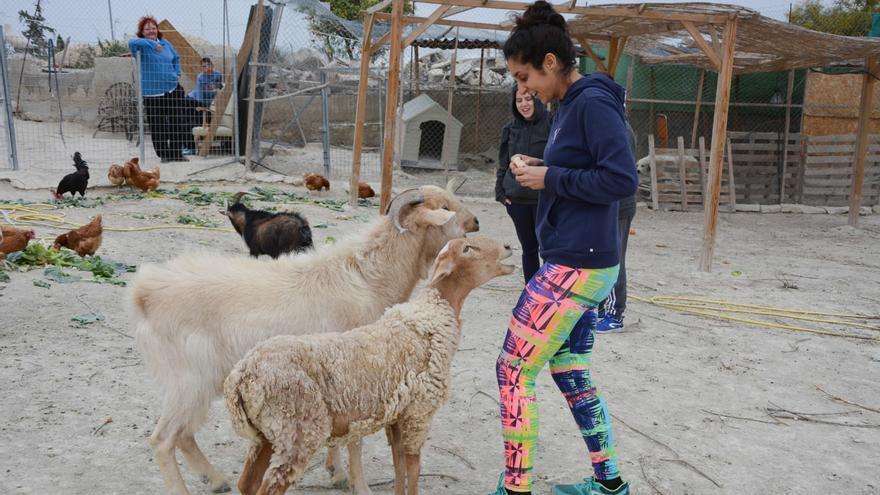 Lorena Garijo Rosillo en Santuario animal El Edén/ Mary Carmen Rosillo