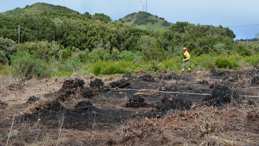 Zona afectada por el fueron, donde se siguen realizando labores para la extinción definitiva del incendio.