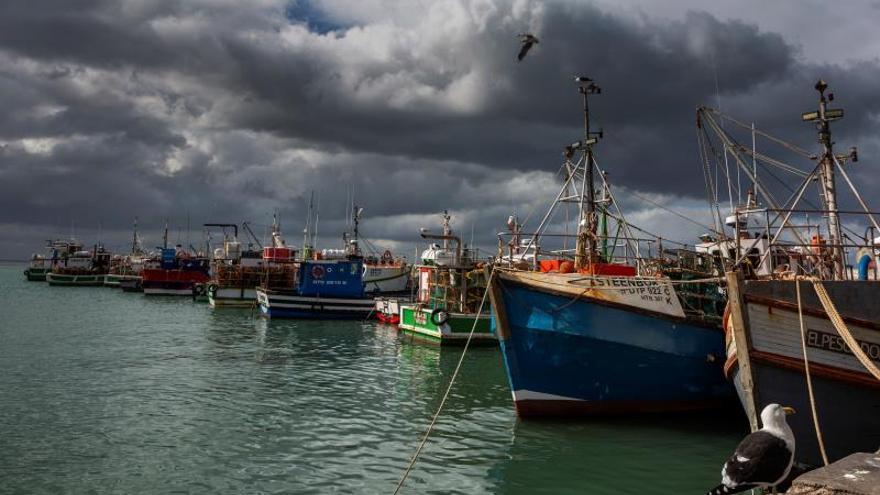 """""""Casi el 90 % de las pesquerías mundiales está explotadas completamente o sobreexplotadas, y la demanda de pescado se proyecta que crecerá un 70 % hacia 2050"""", dijo el autor principal del estudio, Jean Baptiste Jouffray, de la Universidad de Estocolmo."""