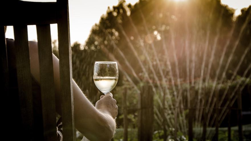 Turismo y vino