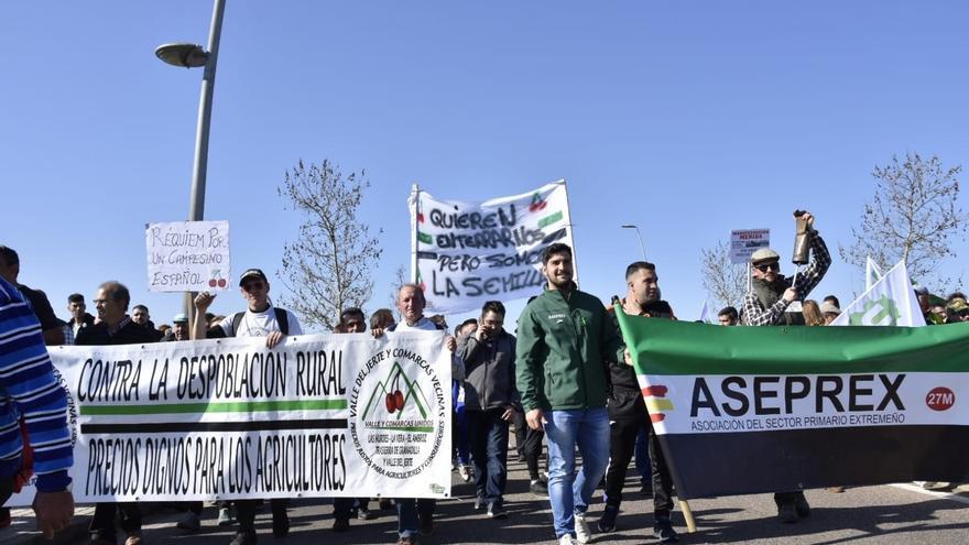 Varios cientos de agricultores avanzan a estas horas por las calles de Mérida en manifestación con destino la Presidencia de la Junta de Extremadura