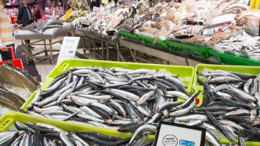 Eroski eleva a 295 toneladas sus compras de anchoa del Cantábrico con sello azul de pesca sostenible