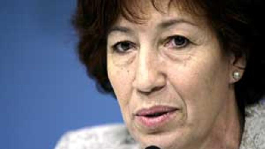 La consejera de Bienestar Social del Gobierno de Canarias, Inés Rojas.