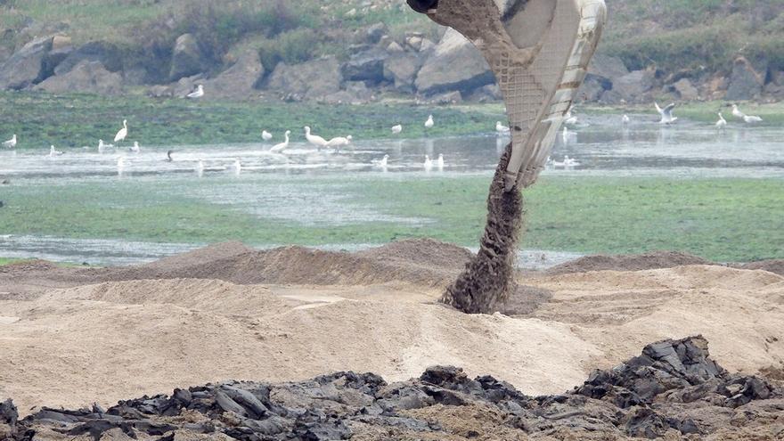 Ecologistas en Acción también solicita la paralización cautelar del relleno de la marisma de Raos