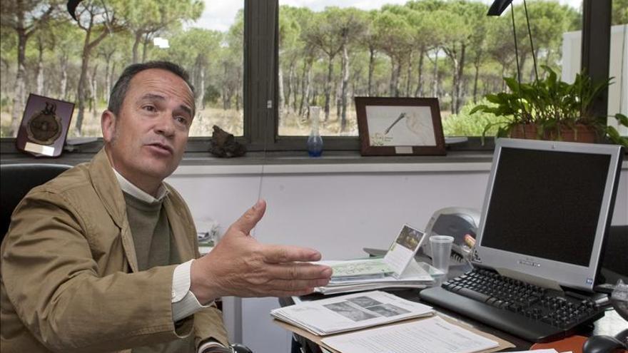 Destituyen a Juan Carlos Rubio, director del Espacio Natural de Doñana