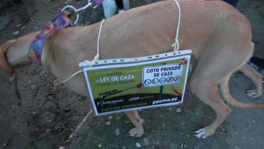 Animal en la manifetsación en contra de la Ley de Caza