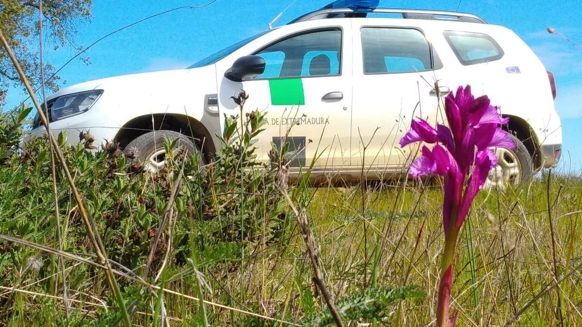 Vehículo de agentes del Medio Natural de Extremadura