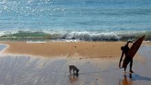 Un surfista y su perro, en una playa