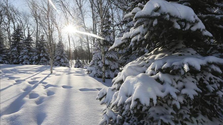 Una onda polar con temperaturas de 45 grados bajo cero llega al este de Rusia