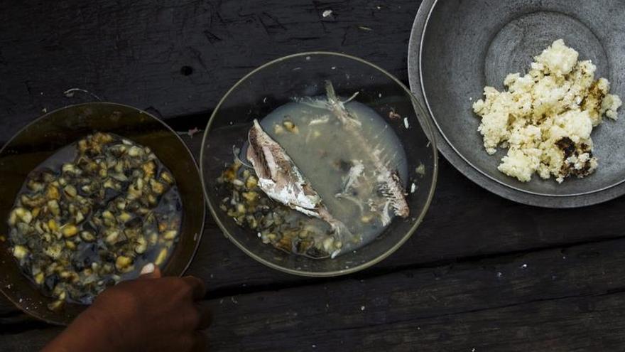 El pez globo, un lujo asiático ya sin riesgo de muerte en China