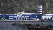 Pescanova usó 26 sociedades para facturas falsas y ocultar deuda, según KPMG