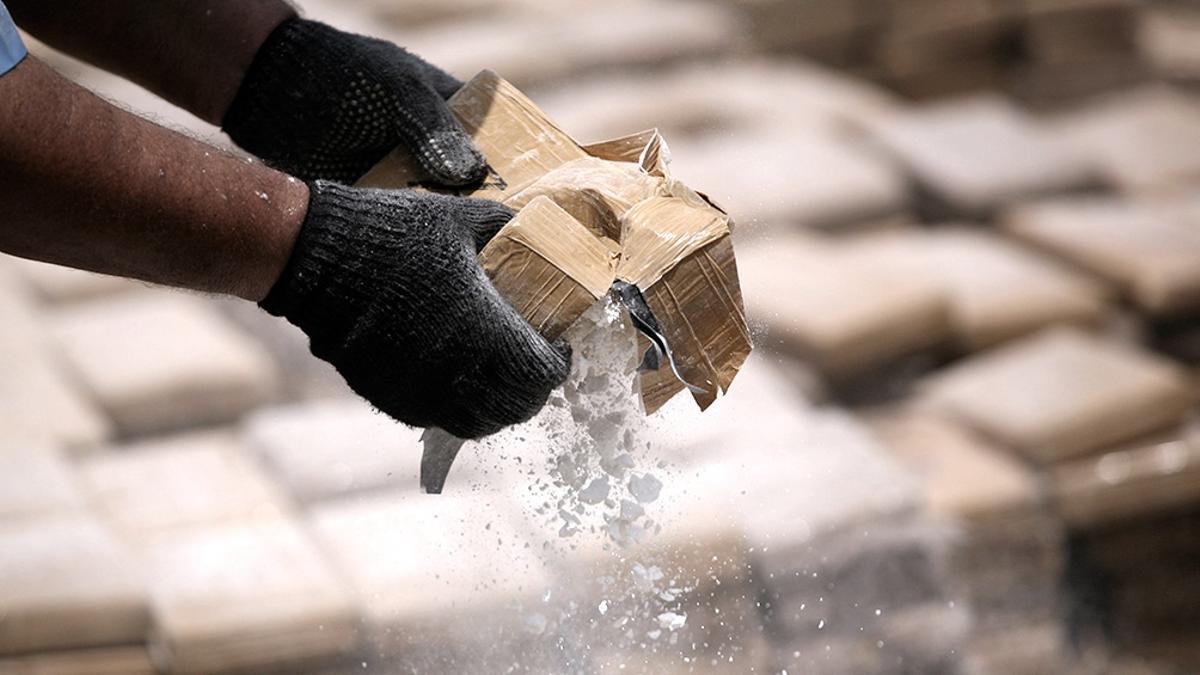 Encontraron 27 mil kilos de cocaína colombiana en el mayor puerto de Bélgica.