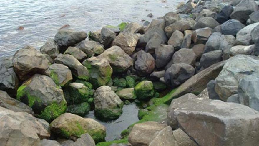 De los vertidos de aguas residuales #5