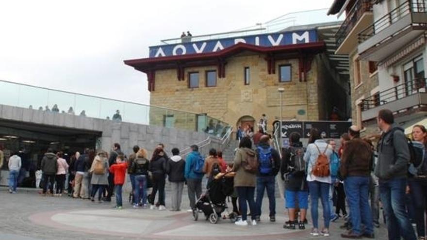 Más de 15.000 personas visitan el Aquarium de San Sebastián durante los cinco días de Semana Santa