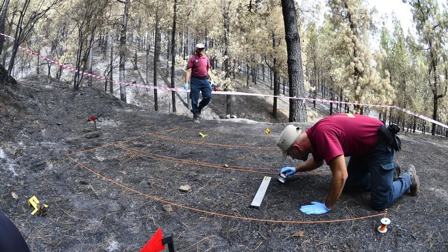 Efectivos de la Brigada de Investigación de Incendio Forestales del Cabildo de Gran Canaria trabajan en busca del origen del fuego. (ÁNGEL SARMIENTO)