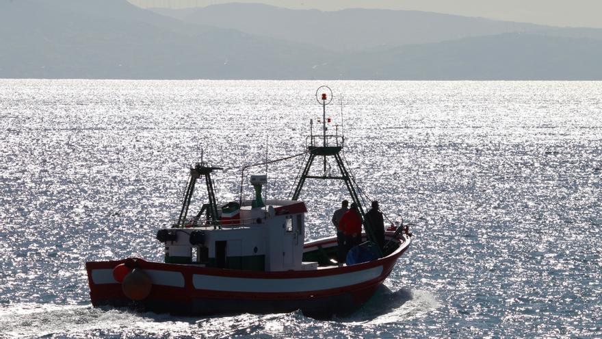 Dimite Maza, presidente de la Federación andaluza pesquera, tras su detención