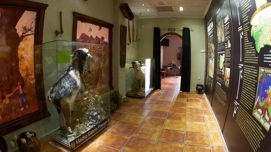 Museo del Queso en El Bosque (Cádiz).