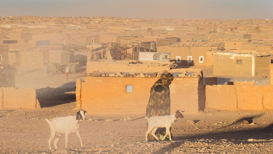 Campo de refugiados saharauis en Tinduf. (DP).
